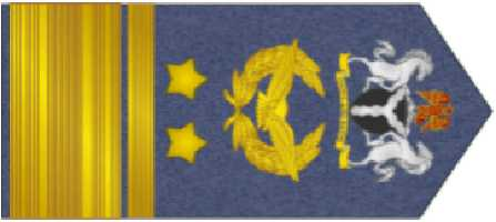 Air Vice Marshal