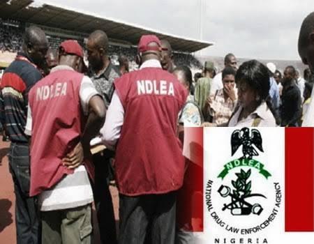 10 Functions of Nigerian Drug Law Enforcement Agency - NDLEA